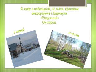 и зимой Я живу в небольшом, но очень красивом микрорайоне г.Барнаула «Радужны