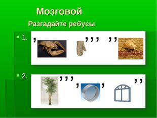 Мозговой Разгадайте ребусы 1. 2.