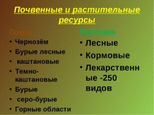 Почвенные и растительные ресурсы Почвы Чернозём Бурые лесные каштановые Темно