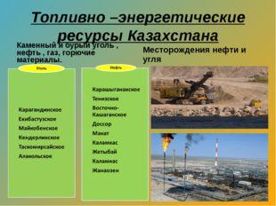 Топливно –энергетические ресурсы Казахстана Каменный и бурый уголь , нефть ,