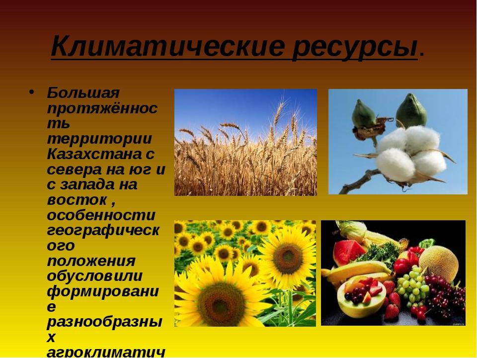 Климатические ресурсы. Большая протяжённость территории Казахстана с севера н...
