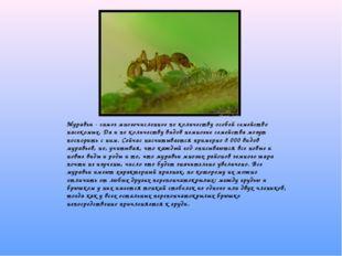 Муравьи - самое многочисленное по количеству особей семейство насекомых. Да