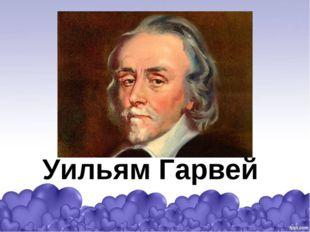 Уильям Гарвей