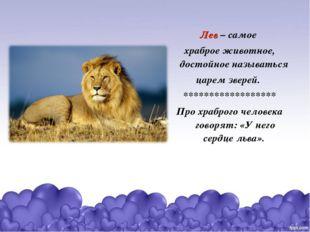 Лев – самое храброе животное, достойное называться царем зверей. ************
