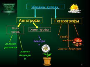 * Питание клетки. Автотрофы Фото -трофы Хемо -трофы Гетеротрофы Зелёные расте