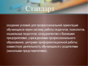 Стандарт создание условий для профессиональной ориентации обучающихся через с