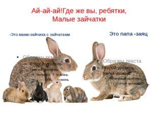 Ай-ай-ай!Где же вы, ребятки, Малые зайчатки -Это мама-зайчиха с зайчатами Это
