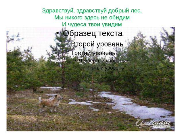 Здравствуй, здравствуй добрый лес, Мы никого здесь не обидим И чудеса твои ув...