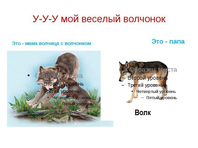 У-У-У мой веселый волчонок Это - мама волчица с волчонком Это - папа