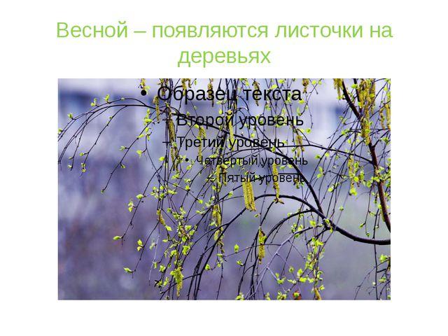 Весной – появляются листочки на деревьях