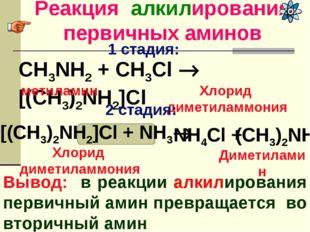 Реакция алкилирования первичных аминов Вывод: в реакции алкилирования первичн