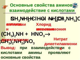 Основные свойства аминов- взаимодействие с кислотами Вывод: при взаимодействи