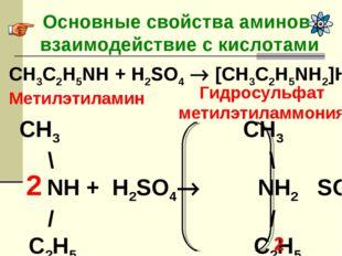Основные свойства аминов- взаимодействие с кислотами CH3C2H5NH + H2SO4  [CH3