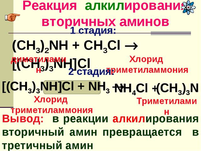 Реакция алкилирования вторичных аминов Вывод: в реакции алкилирования вторичн...