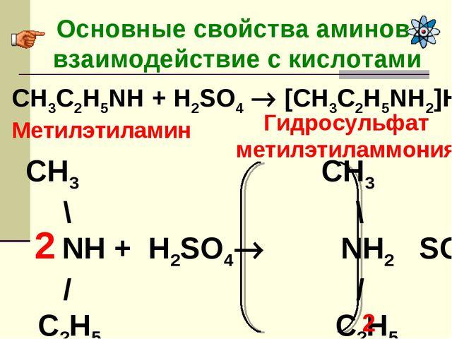 Основные свойства аминов- взаимодействие с кислотами CH3C2H5NH + H2SO4  [CH3...
