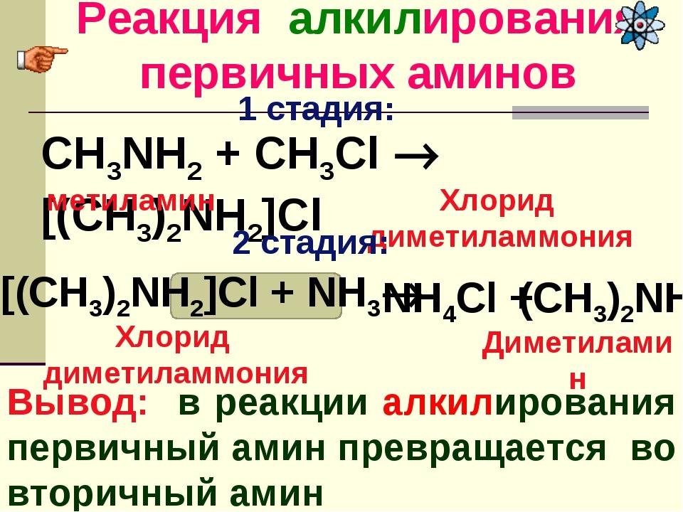 Реакция алкилирования первичных аминов Вывод: в реакции алкилирования первичн...