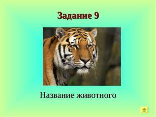 Задание 9 Название животного