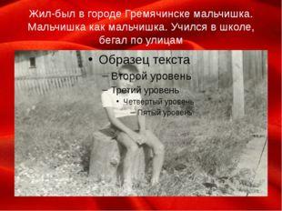Жил-был в городе Гремячинске мальчишка. Мальчишка как мальчишка. Учился в шко