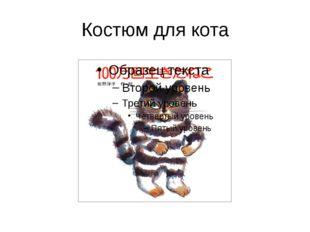 Костюм для кота