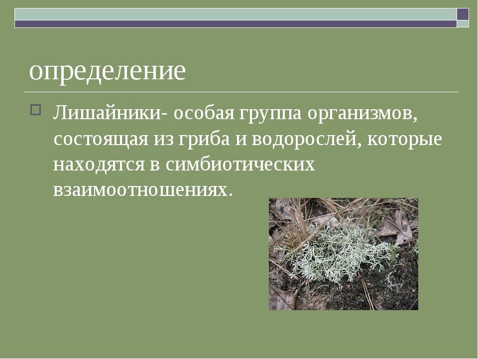определение Лишайники- особая группа организмов, состоящая из гриба и водорос...