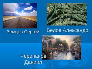 Земцов Сергей Белов Александр Черепанов Даниил