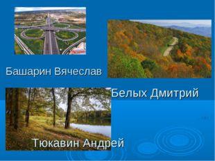 Башарин Вячеслав Белых Дмитрий Тюкавин Андрей