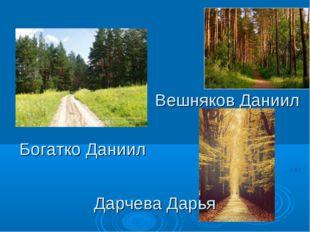 Вешняков Даниил Богатко Даниил Дарчева Дарья