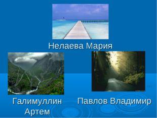 Нелаева Мария Галимуллин Артем Павлов Владимир