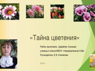 «Тайна цветения» Работу выполнила : Дарийчук Снежана ученица 4 класса МБОУ «Н
