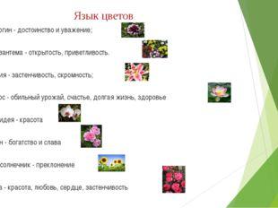 Язык цветов Георгин - достоинство и уважение; Хризантема - открытость, привет