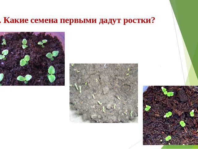 6. Какие семена первыми дадут ростки?