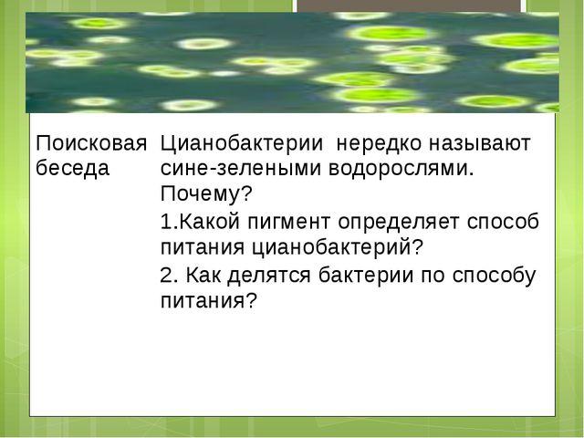 Поисковая беседа Цианобактериинередко называют сине-зелеными водорослями. По...