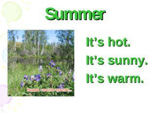 Summer It's hot. It's sunny. It's warm.