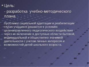 Цель: - разработка учебно-методического плана. Проблемы социальной адаптации