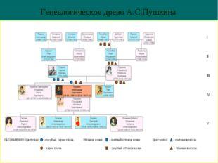 * Генеалогическое древо А.С.Пушкина