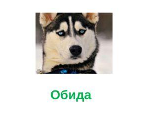 Обида