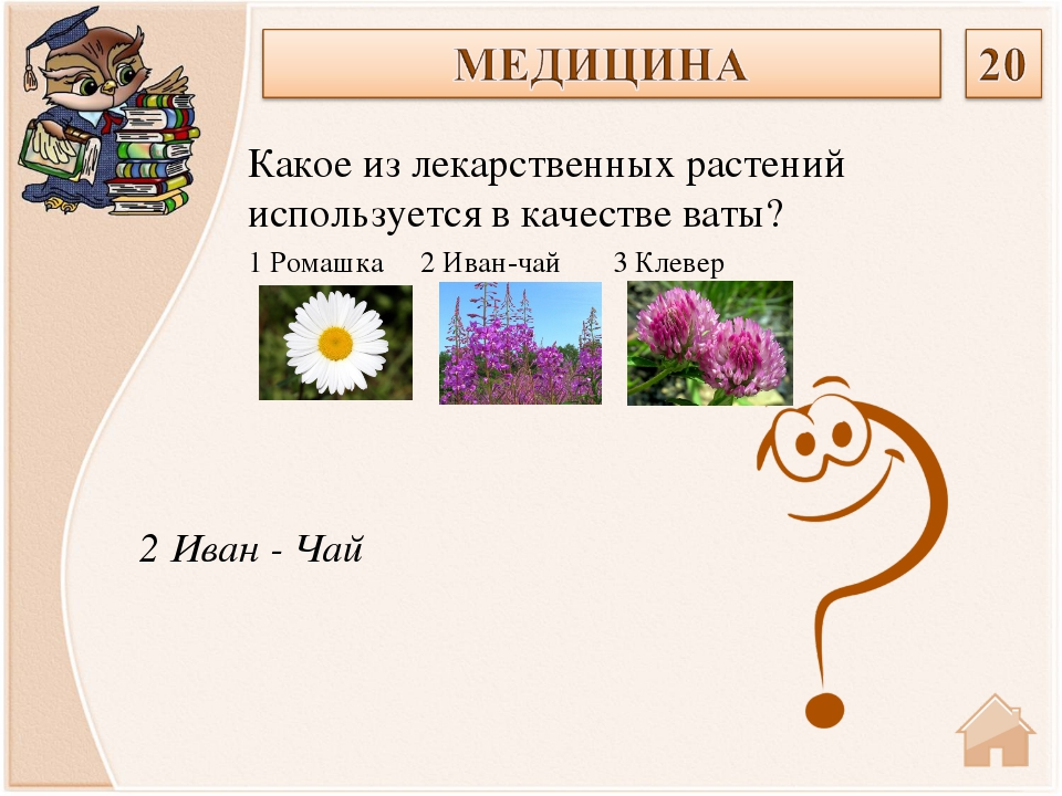 2 Иван - Чай Какое из лекарственных растений используется в качестве ваты? 1...