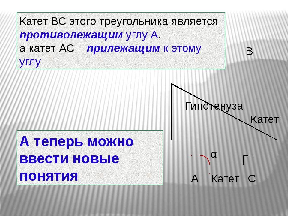 Катет ВС этого треугольника является противолежащим углу А, а катет АС – прил...