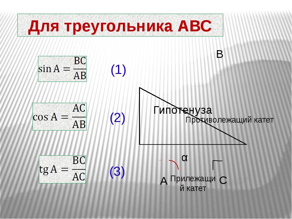 Для треугольника АВС (1) (2) (3) Гипотенуза Прилежащий катет Противолежащий к...