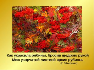 Как украсила рябины, бросив щедрою рукой Меж узорчатой листвой яркие рубины.
