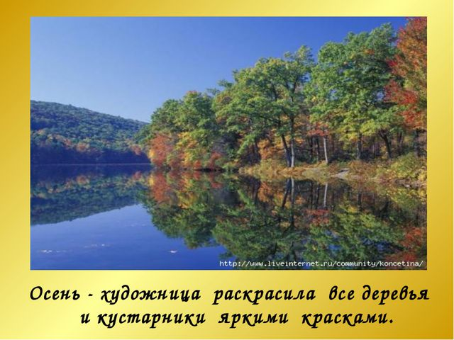 Осень - художница раскрасила все деревья и кустарники яркими красками.