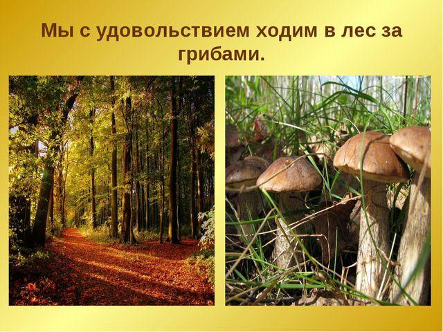 Мы с удовольствием ходим в лес за грибами.