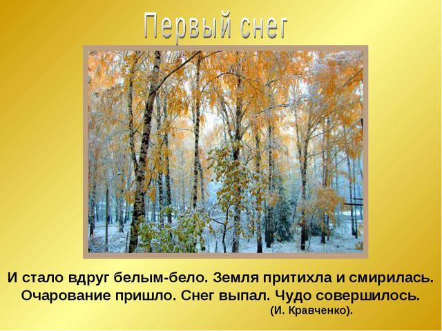 И стало вдруг белым-бело. Земля притихла и смирилась. Очарование пришло. Снег...