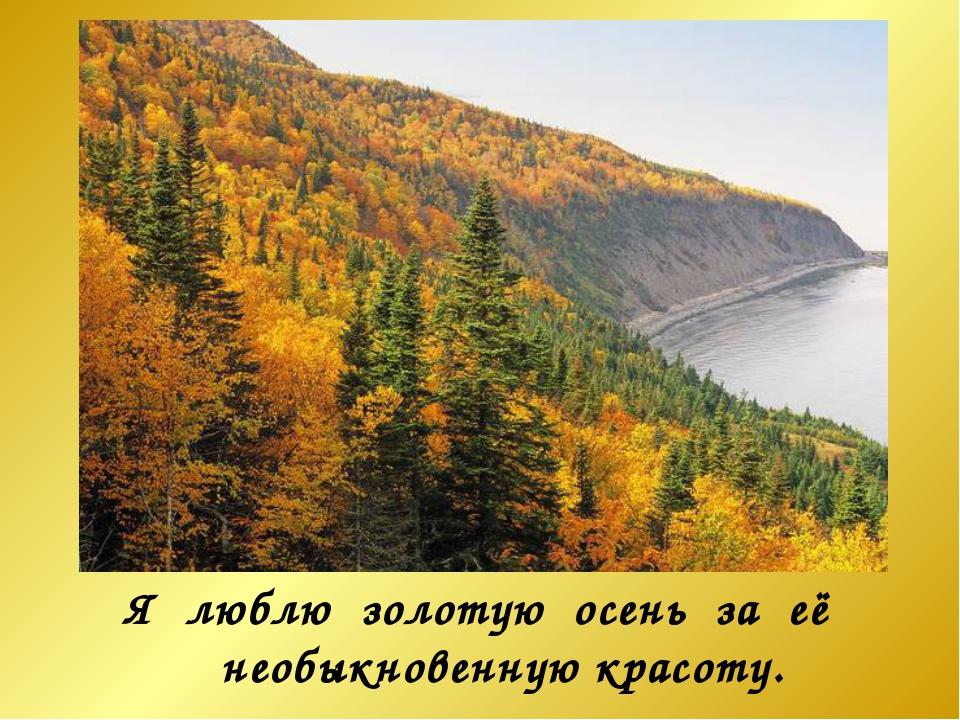 Я люблю золотую осень за её необыкновенную красоту.