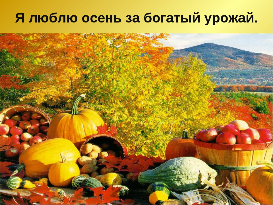 Я люблю осень за богатый урожай.