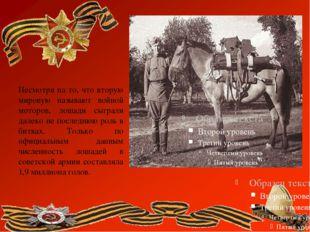 Несмотря на то, что вторую мировую называют войной моторов, лошади сыграли д
