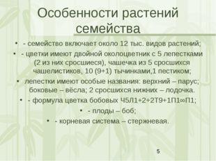 Особенности растений семейства - семейство включает около 12 тыс. видов расте