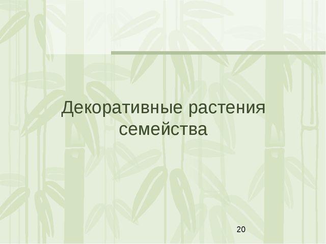 Декоративные растения семейства Яковлева Л.А.