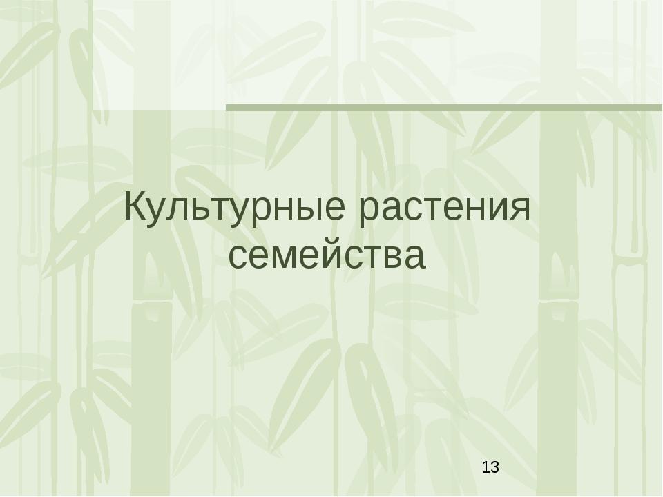 Культурные растения семейства Яковлева Л.А.
