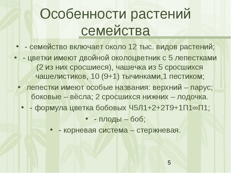 Особенности растений семейства - семейство включает около 12 тыс. видов расте...